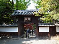 Hanatabi20130504_32
