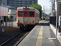 Hanatabi20130505_01