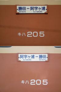 Hanatabi20130505_09