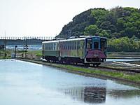 Hanatabi20130505_14