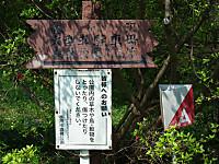 Hanatabi20130505_30