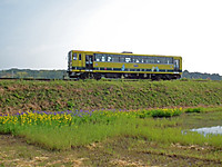 Isumi200_20130510