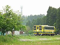 Isumi200_20130513_02