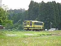 Isumi200_20130516_02