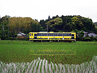 Isumi200_20130522_01