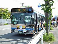 Kanarin20130526_01