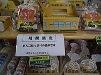Isumi_rail20130602_06