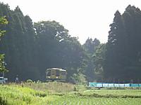 Isumi200_20130604_02