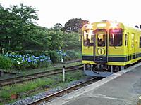 Isumi300_20130607_04
