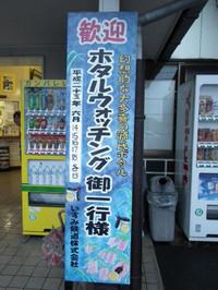 Isumi_hotaru20130614_01