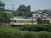 Ayame183_20130623_16