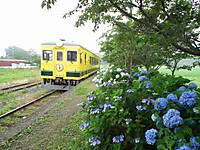 Isumi350_20130625_01