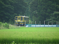 Isumi200_20130716_02