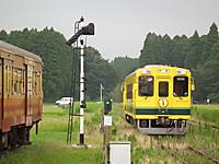 Isumi300_20130726_04