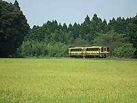 Isumi200_20130813_08