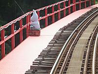 Isumi_rail20130813_14