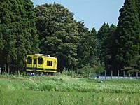 Isumi300_20130901_15