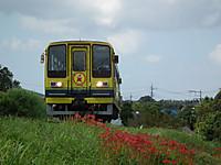 Isumi200_20130921_14