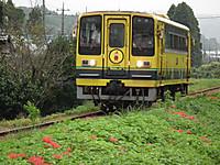 Isumi200_20130926_02