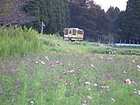 Isumi200_20130930_02