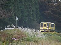 Isumi200_20131107_01