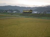 Isumi200_20131110_02
