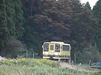 Isumi200_20131111_01