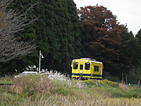 Isumi300_20131112_02