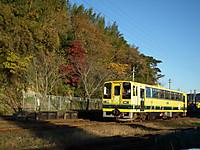 Isumi200_20131130_02