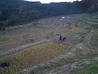 Tanada20131201_08