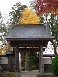 Otaki_yakui20131206_02