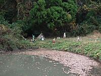 Isumi_rail20131208_09