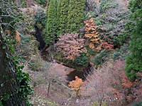 Yorokeikoku20131208_14