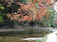 Yorokeikoku20131208_23