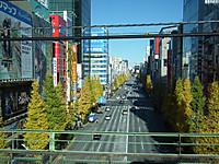 Sayonara183_20131215_35