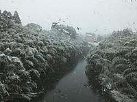 Isumi_rail20140208_20