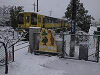 Isumi_otaki20140214_06