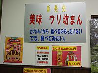 Isumi_otaki20140215_09