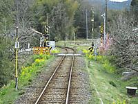 Isumi_rail20140314_05