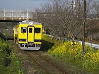Isumi350_20140317_03