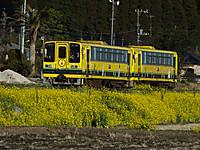Isumi200_20140322_02