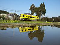 Isumi300_20140323_03