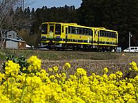 Isumi200_20140323_17