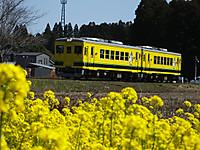 Isumi350_20140323_16