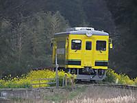 Isumi350_20140326_01
