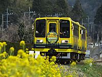Isumi200_20140329_01