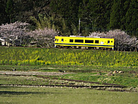 Isumi300_20140331_02