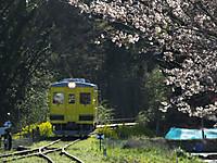 Isumi350_20140331_01