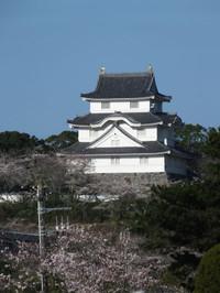 Isumi_otaki20140331_05
