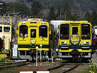 Isumi_otaki20140331_10